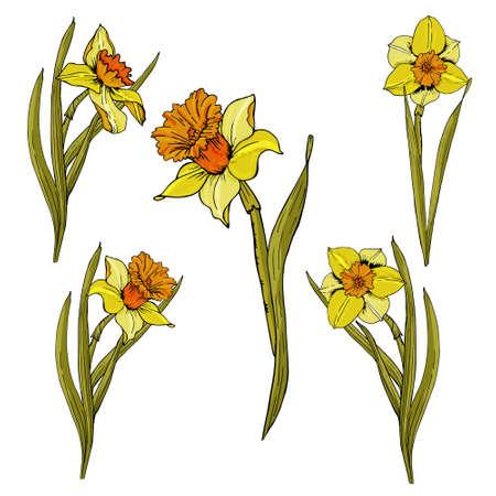 flower seamless pattern. Realistic detailed botanical outline sketch drawing design illustration.