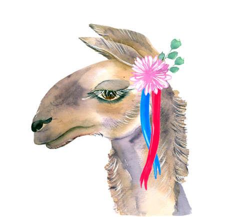 Cute hand drawn llama with a wreath of flowers. Bouquet of flowers. Reklamní fotografie