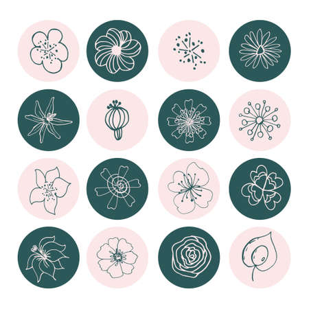 Flowers flat line icons. Graceful sign boards for a flower shop. Covers stories, covers. Icons