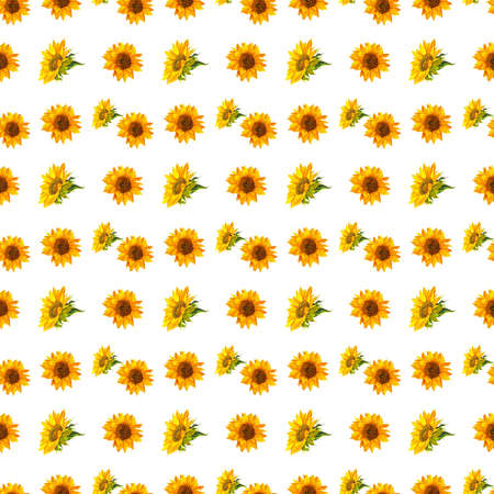 Seamless background with watercolor sunflowers. Collection decorative floral design elements.