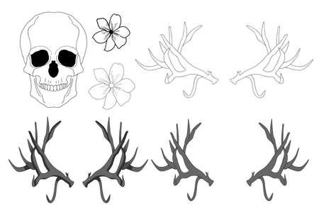 Set of elements. Realistic black and white human skull, large sharp deer antlers, flowers. Ilustrace