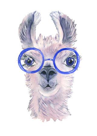 Cute hand drawn llama in bright glasses. Funny animal. Woolen Alpaca from Mexico. Travel.