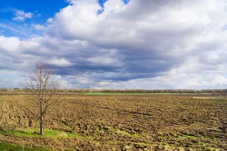 Spring landscape arable fields under a blue sky  photo