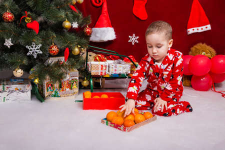 A cute boy found tasty tangerines under a Christmas tree