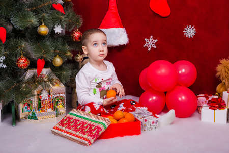Funny kid found tangerines under a Christmas tree