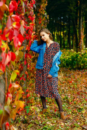 Adorable woman. Autumn stylish outfit. Adorable lady enjoy sunny autumn day. Fashionable clothes. Femininity and tenderness. Fall fashion. Woman walking in autumn park. Archivio Fotografico