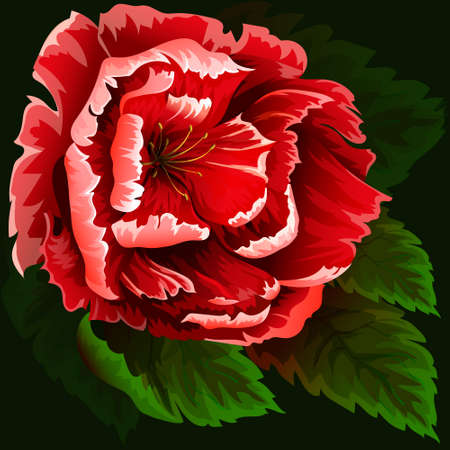 abloom: Red flowers on green  background Illustration