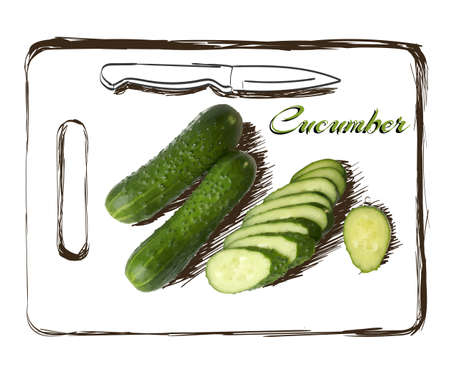 sliced: ripe cucumber cut segment on board with knife vector illustration isolated on white background Transparent objects used for shadows and lights drawing