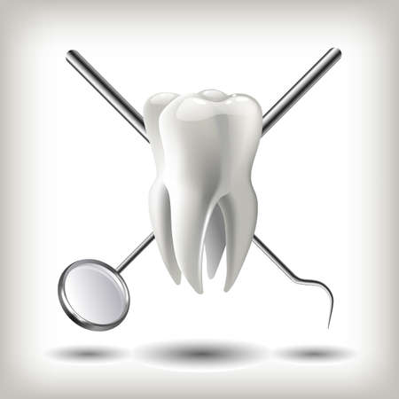 clean office: Clean teeth denture, dental jaw model, mirror and dentistry instruments in dentists office.