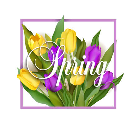 Spring text with tulip flower Vector