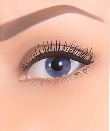 realistic 3D human eye with long eyelashes and with blue iris gradient, vector illustration