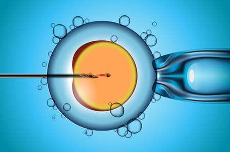 artificial fertilization of human female egg vector illustration