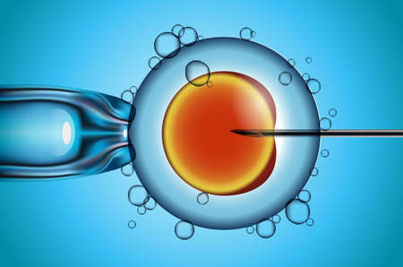 artificial fertilization of human female egg vector illustration Vectores