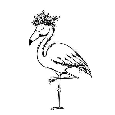 Flamingo bird black outline on white background isolated vector illustration 免版税图像 - 143344685