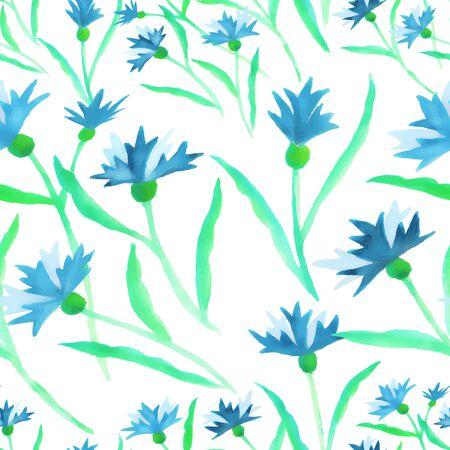 Pattern watercolor blue cornflower border on white