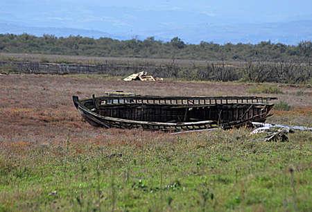 carcass: houten vissersboot karkas te rotten op oever van de rivier