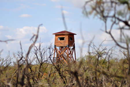 animal watching: wooden construction for bird  watching