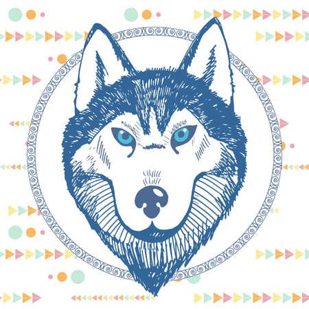 Retrato dibujado a mano de un husky en un círculo Ilustración de vector