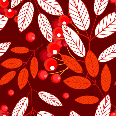 Autumn seamless pattern with openwork ashberry leaves and red berries on a red background. Vector.