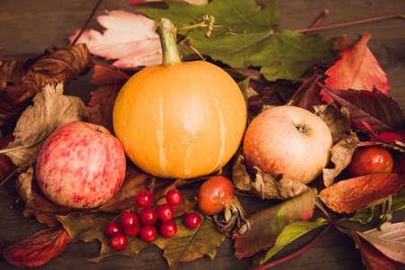 Composition of autumn leaves, pumpkin and red berries on a background of wooden boards. The concept of thanksgiving and Halloween Standard-Bild
