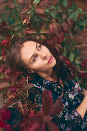Young beautiful stylish girl in dress posing between autumn leaves. Pretty smile lady with long healthy dark hair