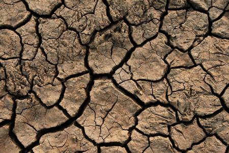 Soil cracked background. Earth in dry season