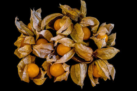 Yellow fresh physalis with dry leaves lying on a black background shot from above in the studio