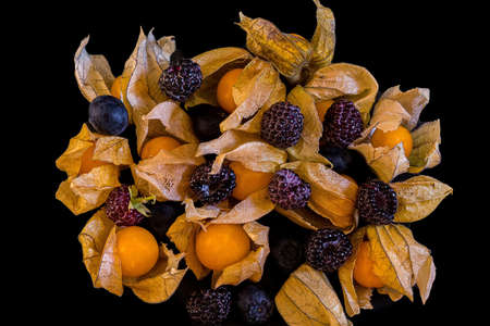 Yellow fresh physalis with dry leaves and  raspberries lying on a black background shot from above in the studio