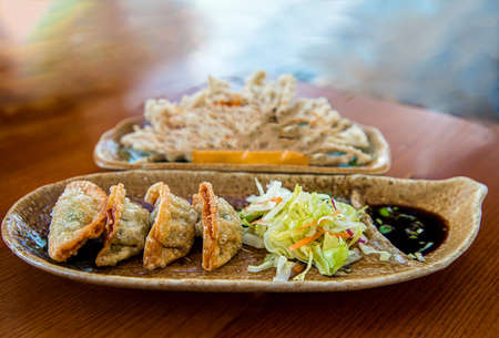 chinese fried dumplings on a plate with soy sauce and vegetable salad close frame shoot indoor close up and copy space