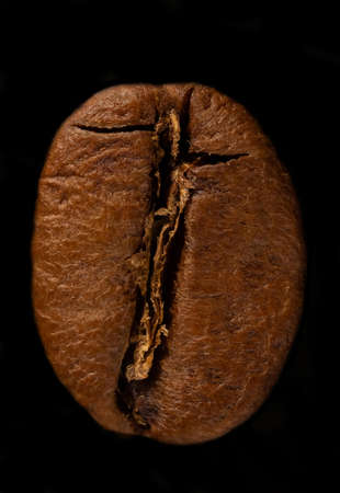 super macro shot of one roasted coffee bean very large isolated on black background arabica