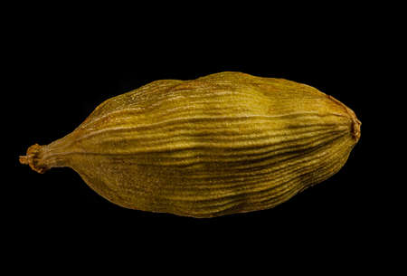 macro shot of one pod of cardamom green isolated on a black background very close in detail Фото со стока