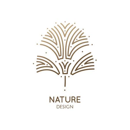 Tropical decorative plant Illustration