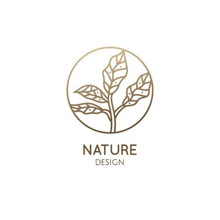 Tropical plant . Round emblem leafs in linear style. Icon of fresh green tea. Vector abstract badge for design of natural products, flower shop, cosmetics, ecology concepts, health, spa Center