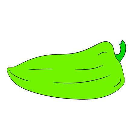 Bulgarian green pepper on white background of vector illustrations
