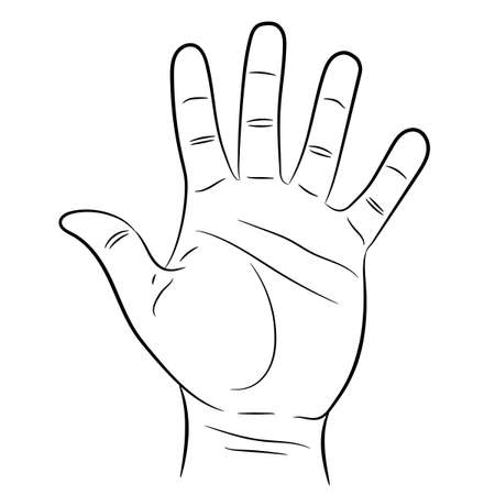 hand showing five fingers on white background of vector illustrations Illustration