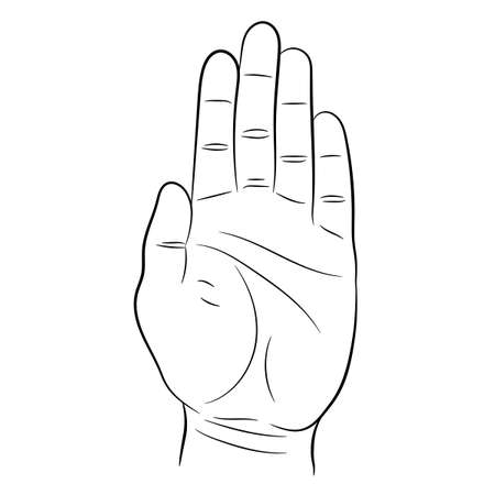 palm and the hand, the stop signal on white background of vector illustrations