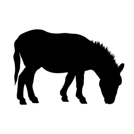 Black silhouette of donkey on white background of vector illustration