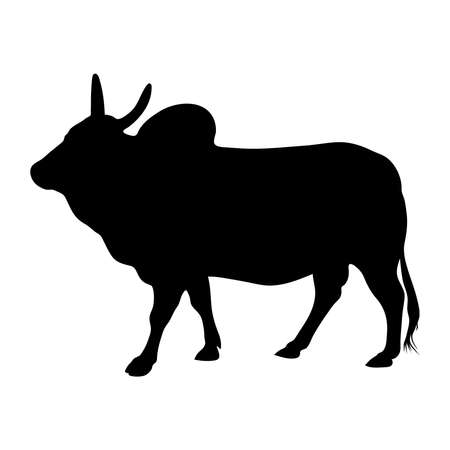 Black silhouette of bull zebu on white background of vector illustration Illustration