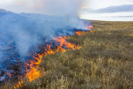 Fire in the steppe. Burning dry grass, emergency. Stock Photo