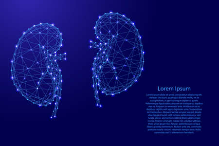 Kidneys of the human body from futuristic polygonal blue lines and glowing stars for banner, poster, greeting card. Vector illustration.