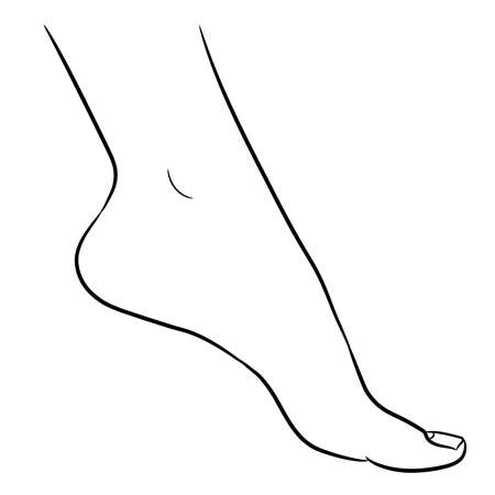 Foot female from the contour black brush lines on white background. Vector illustration.