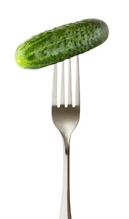 Cucumber whole green one on impaled on a fork isolated on white background. 写真素材