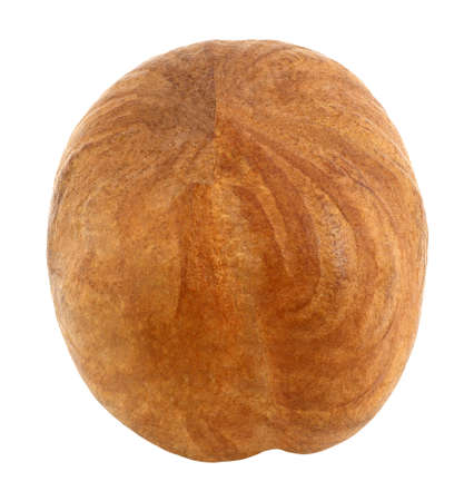 Hazelnut core whole one isolated on white background with clipping path. Full depth of field.