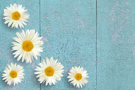 Garden flowers over a blue wooden table background. Background with space for copying.