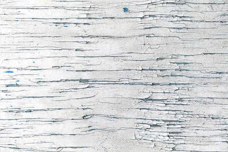 Background the painted surface of the old white peeling paint. 版權商用圖片