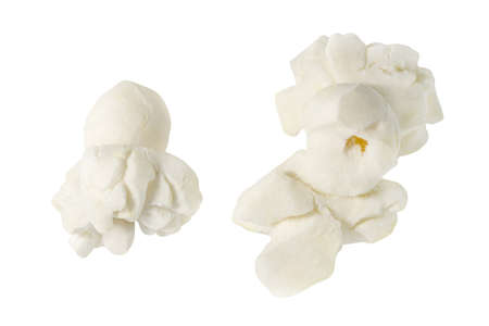 Popcorn, two open corn, isolated on white background