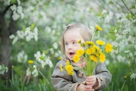 little girl with Down syndrome is holding a bouquet of dandelions
