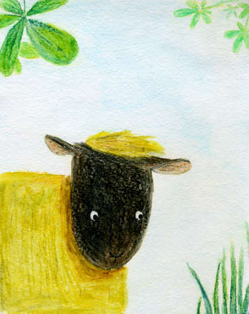 sideways: Sheep looking sideways, in watercolor Stock Photo
