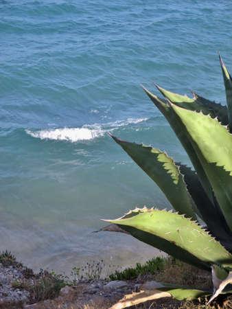 mare agitato: mare agitato visto dall'alto di una roccia
