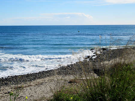 herbaceous: rough seas and herbaceous plants by the sea